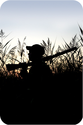 a silhouette of a hunter in the marsh at dawn